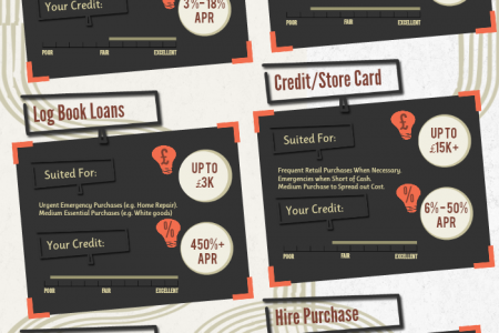Understand Your Credit Options Infographic