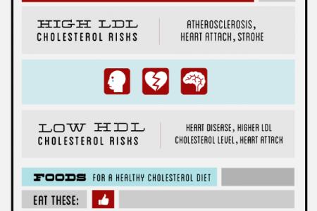 Understanding Healthy Cholesterol Levels  Infographic