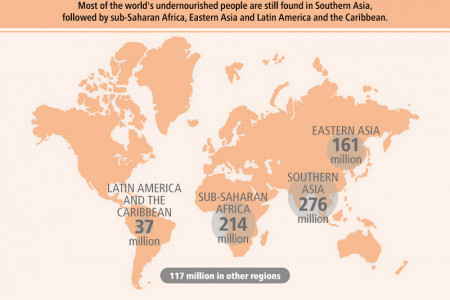 Understanding hunger and malnutrition Infographic