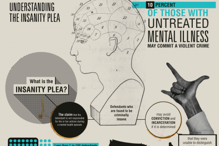 Understanding The Insanity Plea Infographic