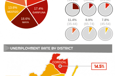 Unemployment in Belize 2012 Infographic