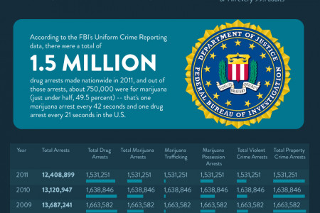 United States Marijuana Arrest Information Infographic
