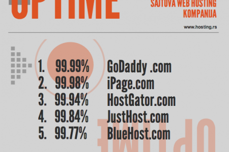 UPTIME websajtova top 5 hosting kompanija Infographic