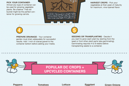 Urban Agriculture in DC Infographic Infographic