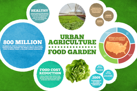 Urban farming and urban food garden Infographic