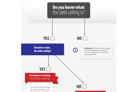 US Debt Ceiling - How would you manage this? Infographic