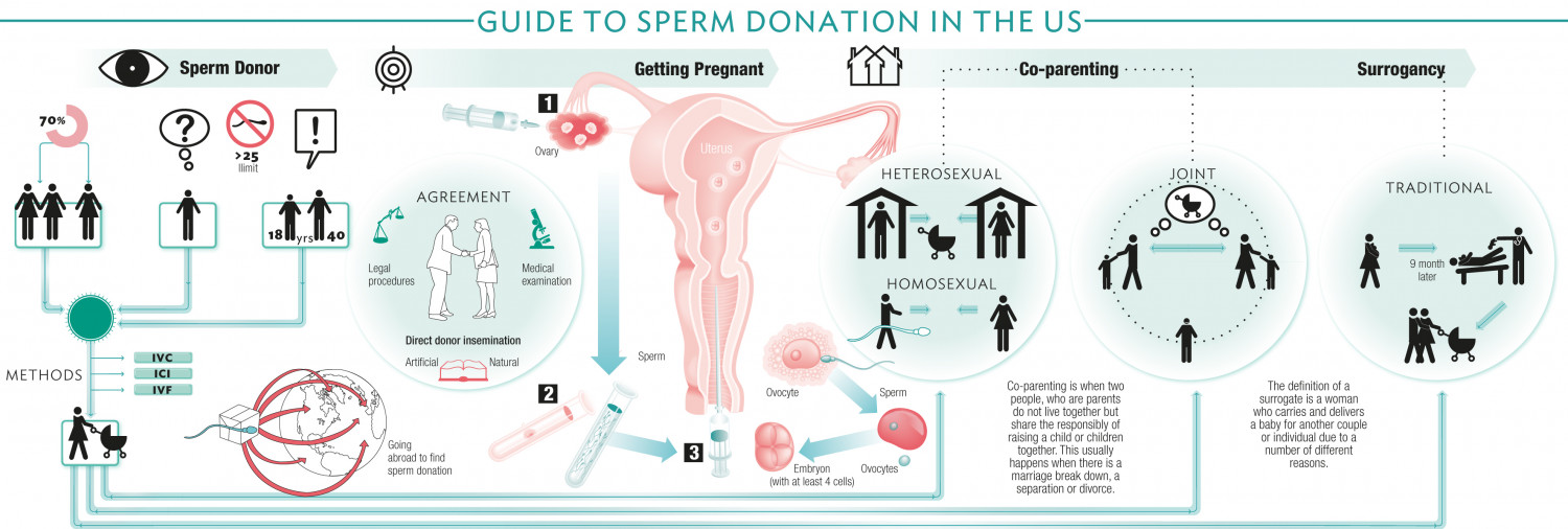 Guide to Sperm Donation in the US Infographic