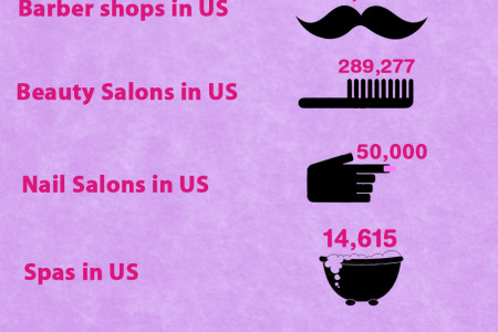 USA Salon Stats 2014 Infographic