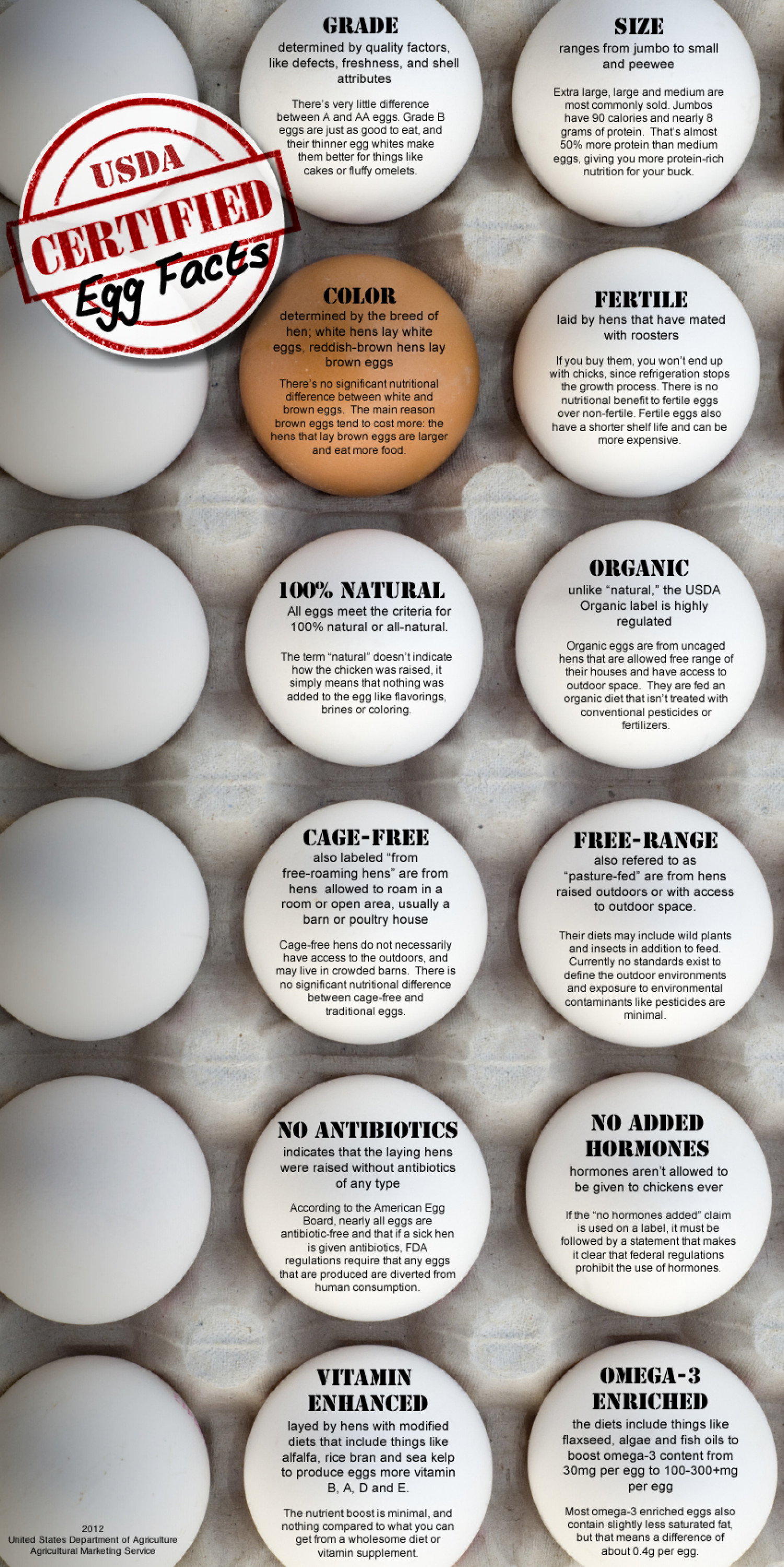 USDA Certified Egg Facts Infographic