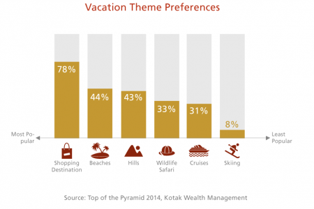 Vacation Theme Preferences Infographic