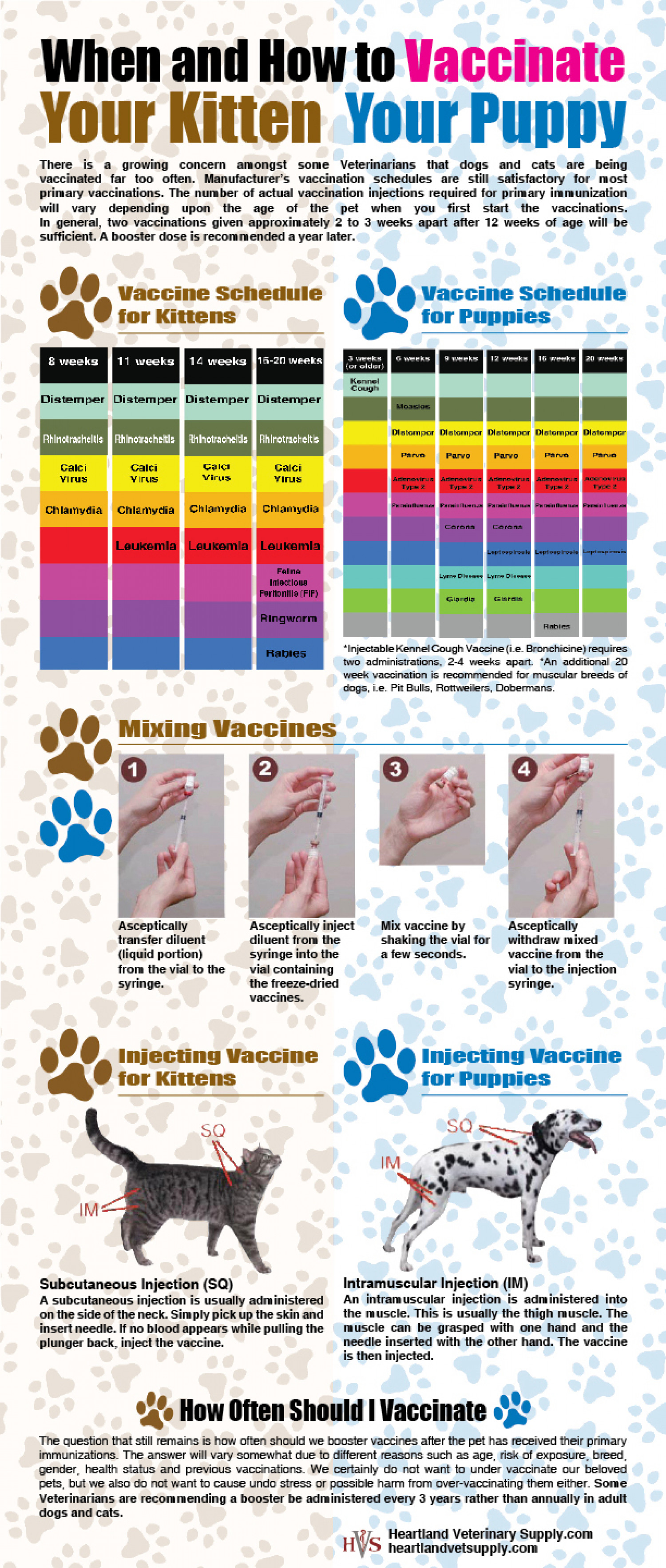 Vaccinating Your Kitten and Puppy Infographic