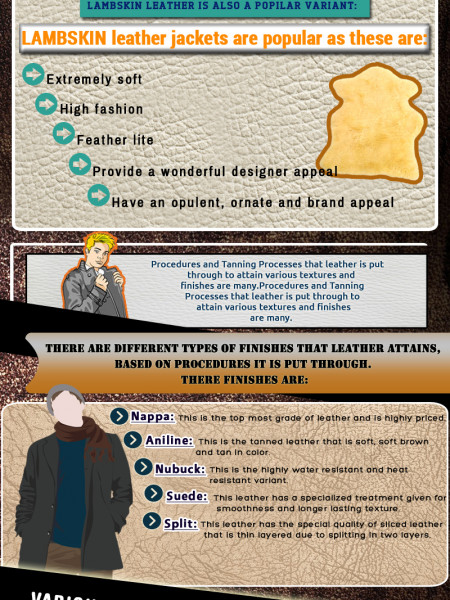 Various kinds of leather used for making leather jackets Infographic