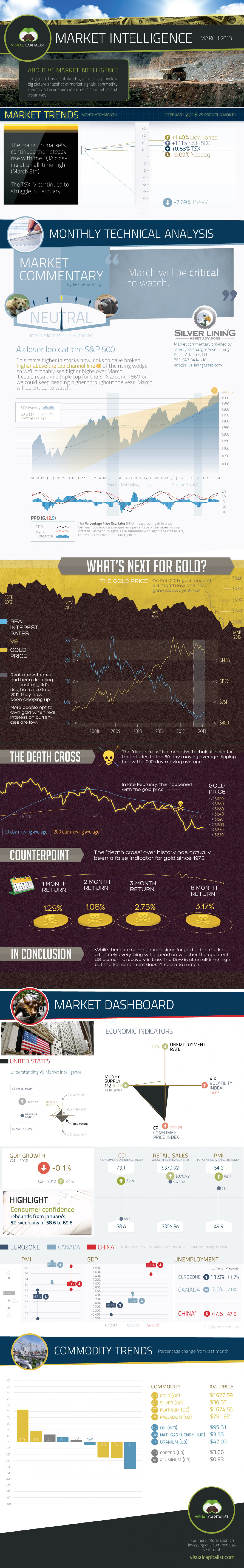VC Market Intelligence - March 2013 Infographic