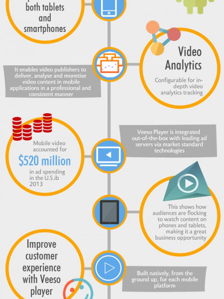 Veeso | An Enterprise Grade Solution For Video Publishers Infographic