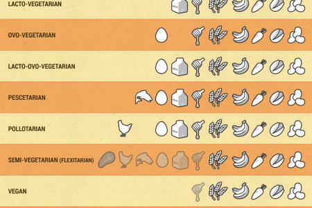 Vegetarian - Who Eats What Infographic