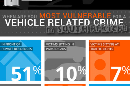 Vehicle Theft in South Africa Infographic
