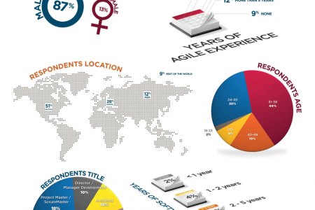 VersionOne Salary Survey Infographic