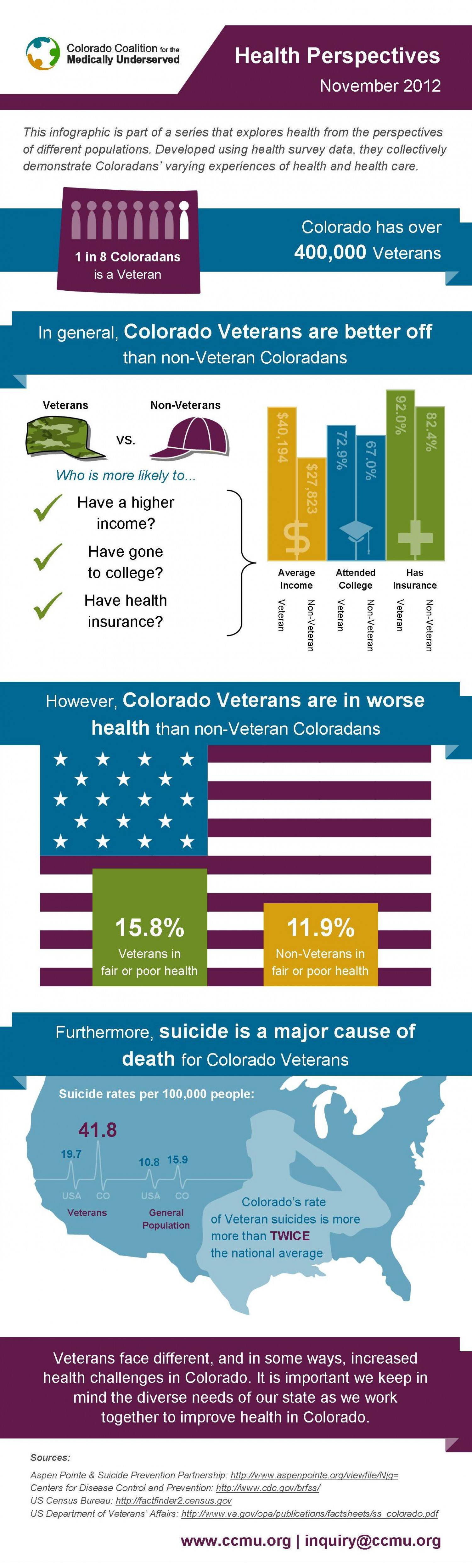 Veteran's Health Infographic