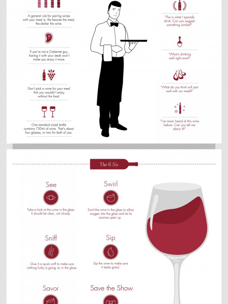 Vino Lovers Menu Infographic Infographic