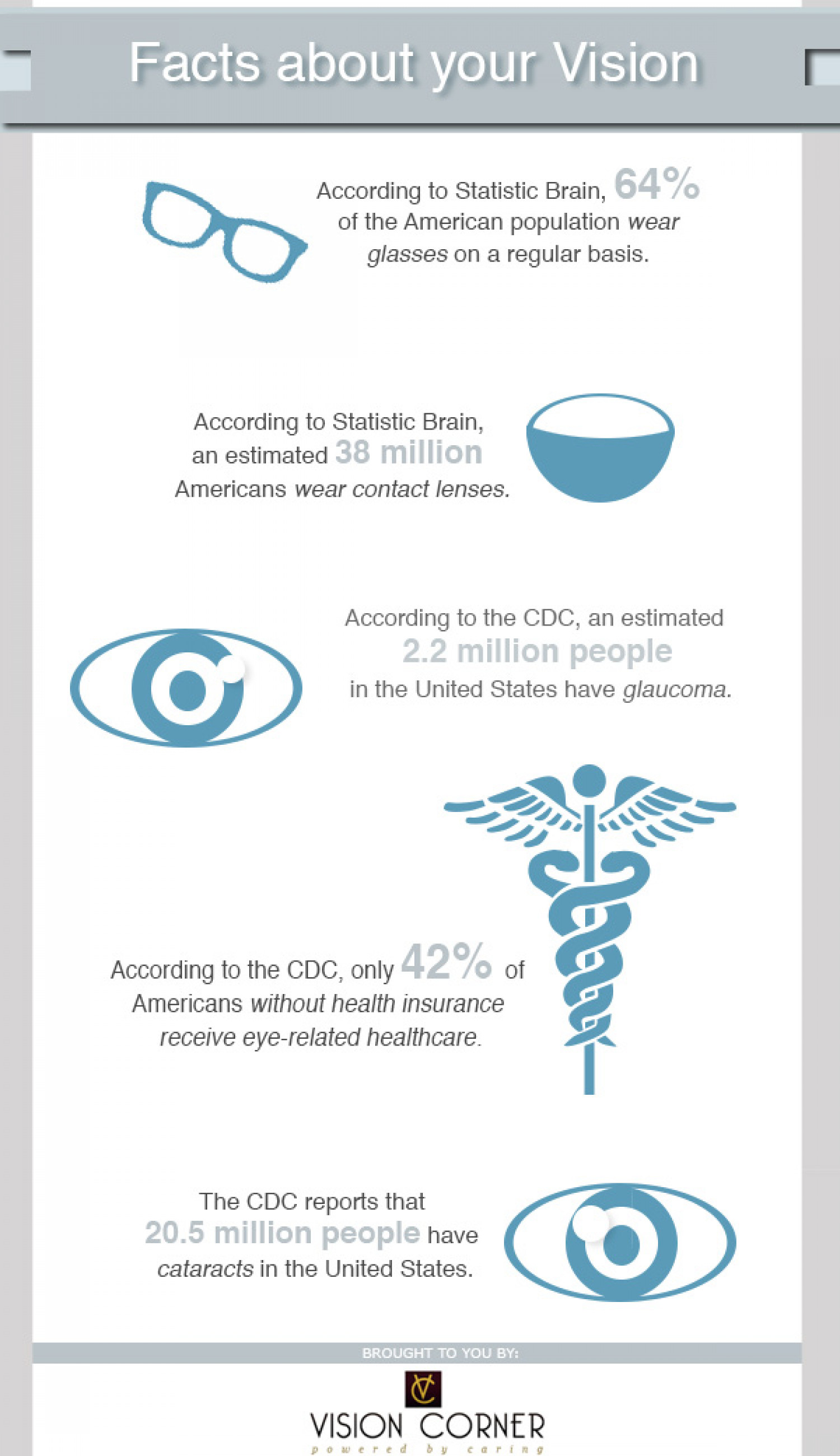 Facts About Your Vision Infographic
