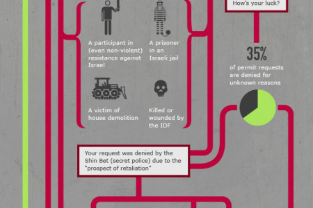 Visualizing Occupation: Freedom of movement Infographic