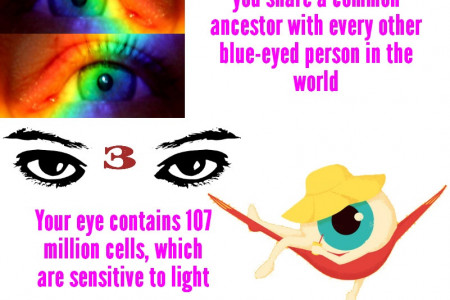 Vital Fun Facts About Your Eyes Infographic
