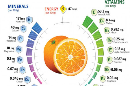 vitamins and minerals found in oranges Infographic