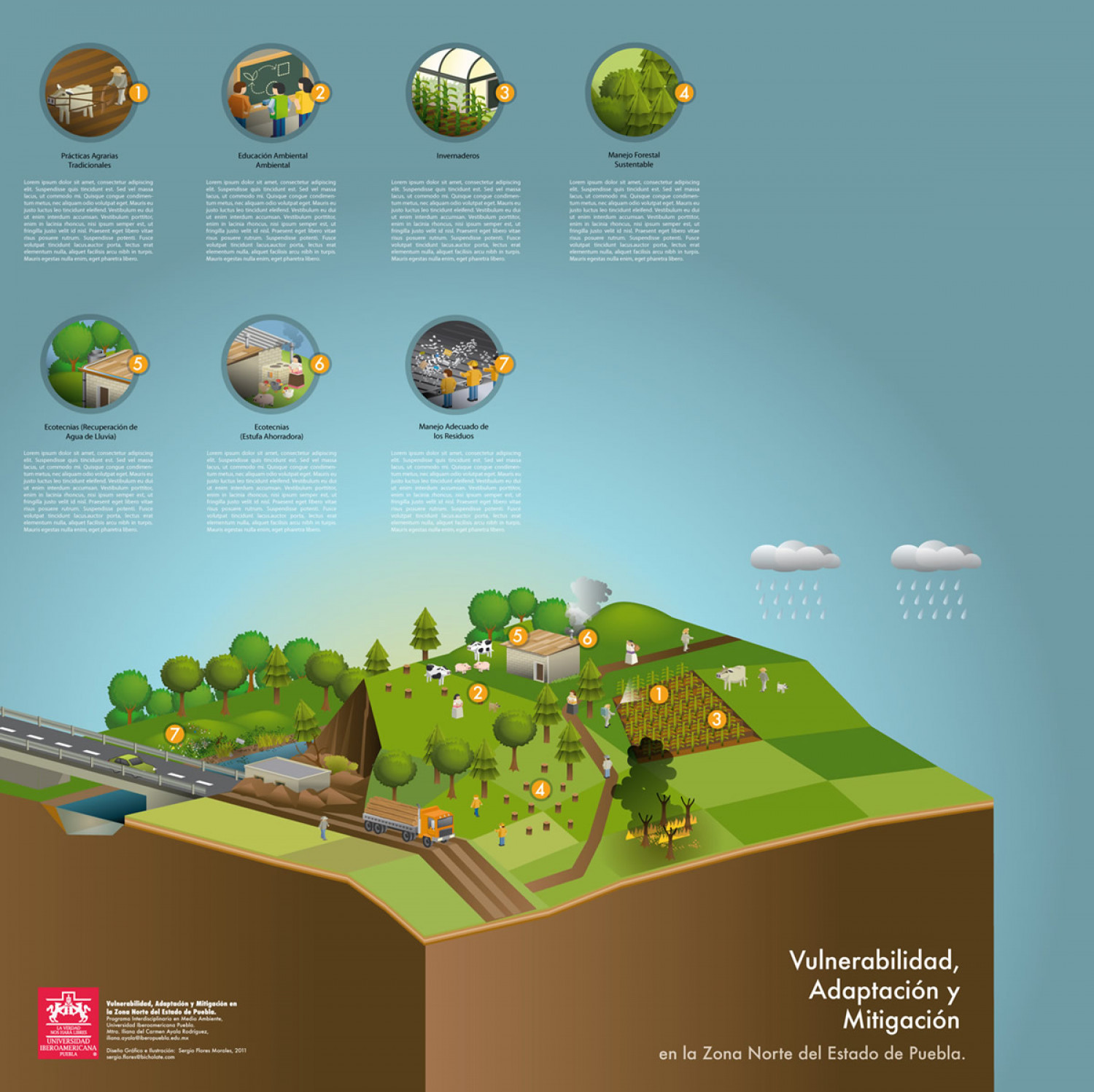 Vulnerability, adaptation, mitigation, forest. Infographic