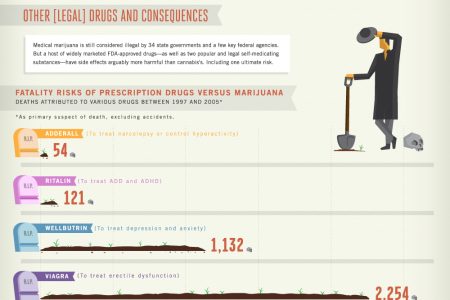 Wack Weed Attitudes Infographic