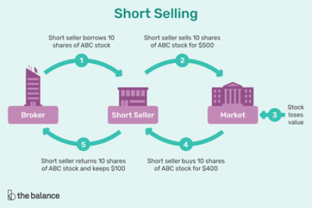 Want To Know More About Stock Market, Shares And Many More? Read Below Infographic