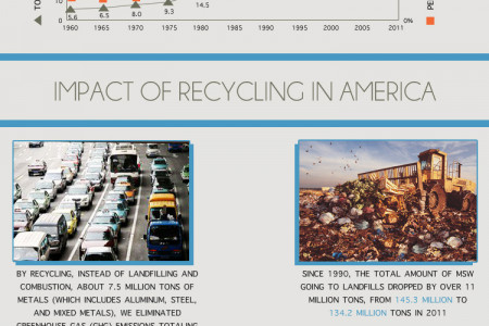 Wasted in America Infographic