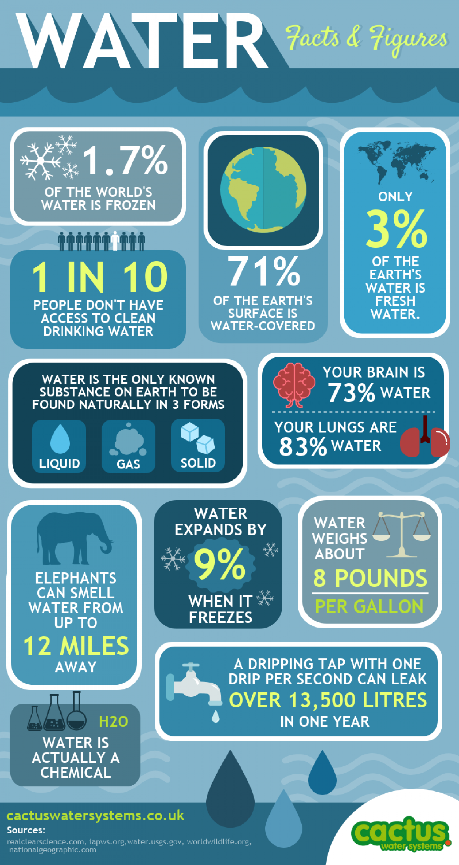 WATER - Facts and Figures Infographic