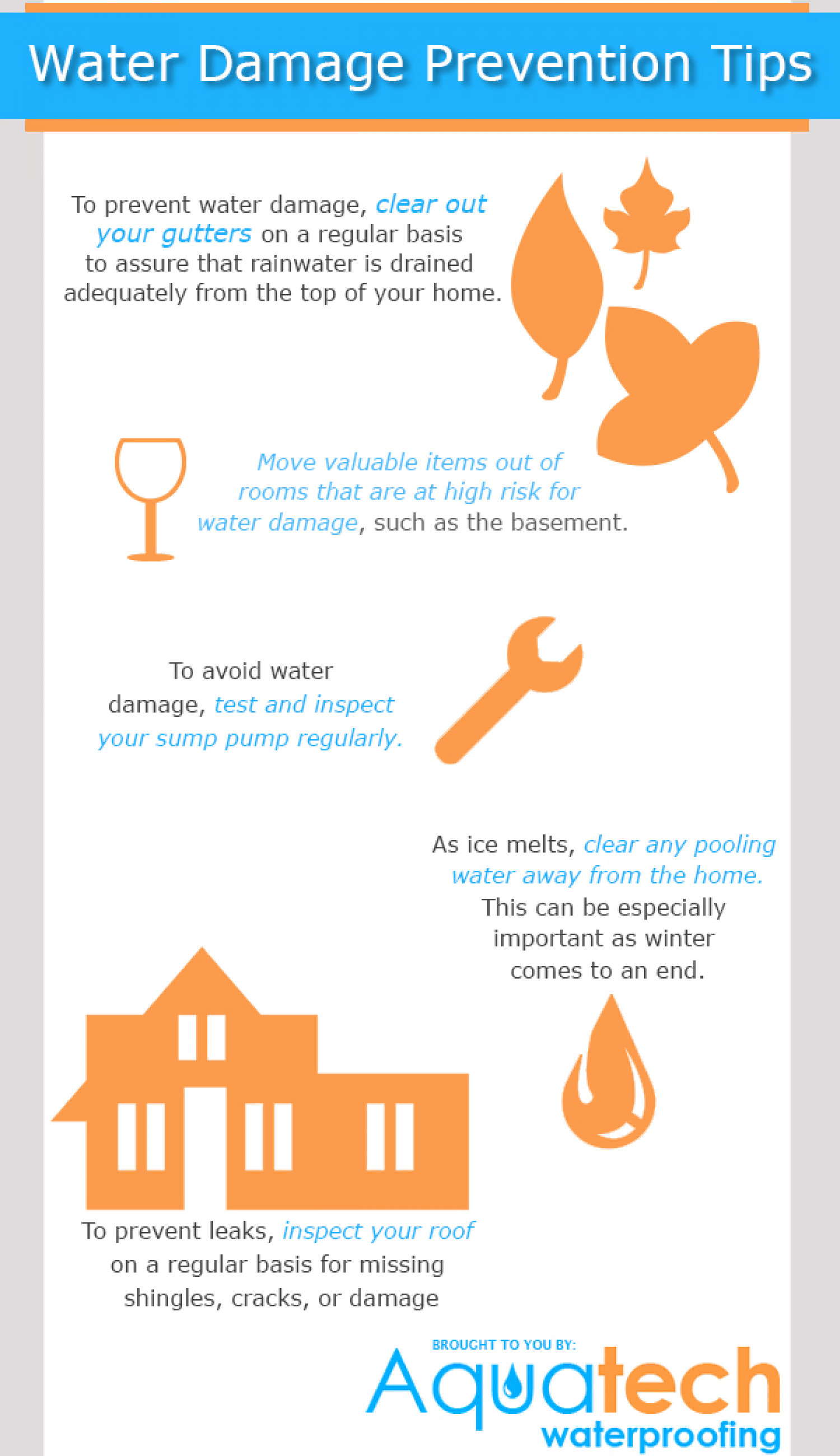 Water Damage Prevention Infographic