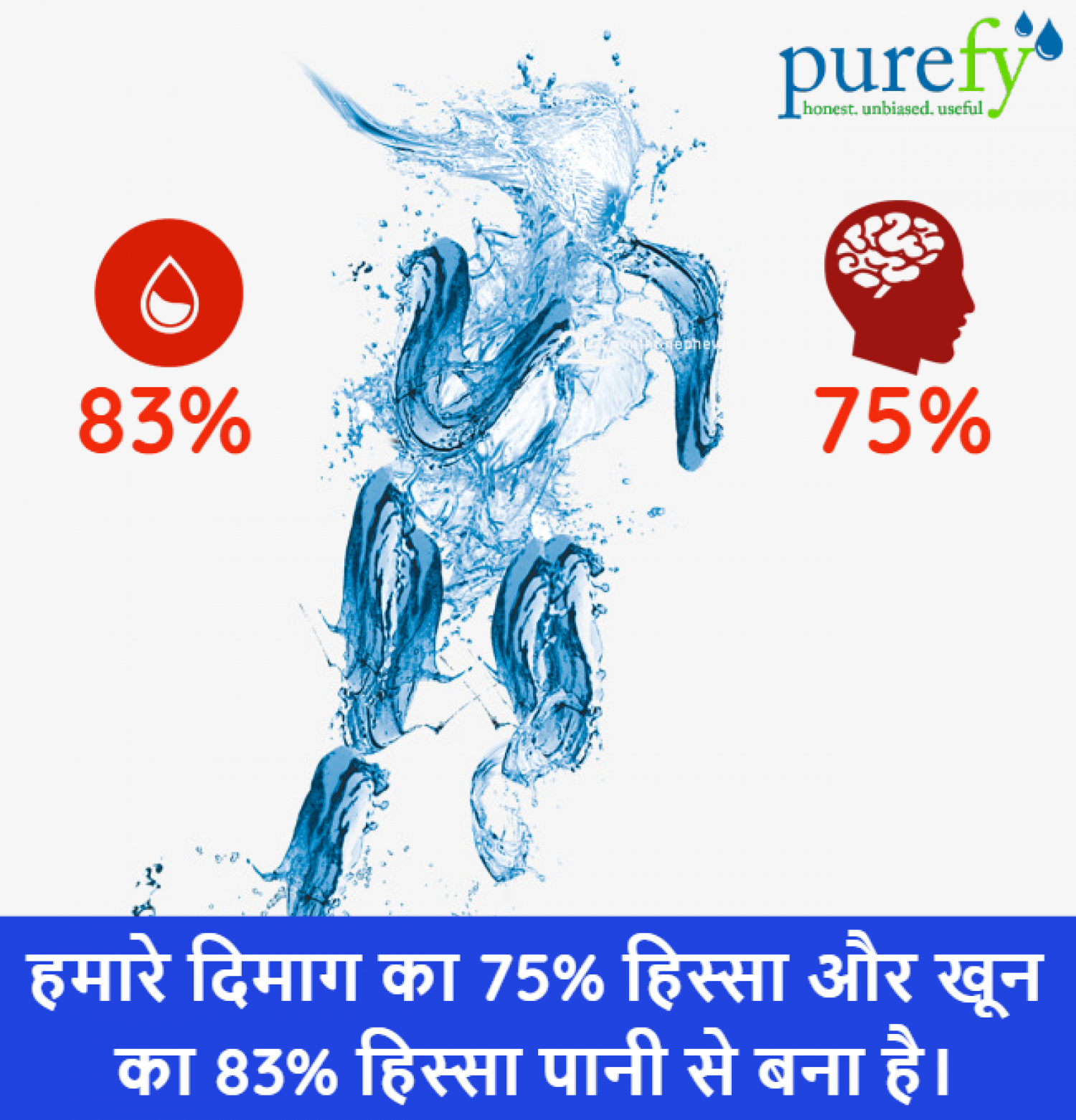 Water Facts Infographic