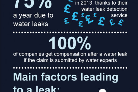 Water Leak Detection Infographic