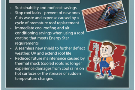 Waterproofing systems for roofs Infographic