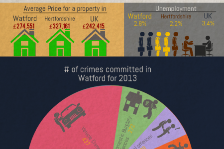 Watford by the Numbers Infographic