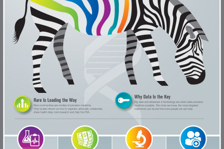 We Are All Zebras: How Rare Disease Is Shaping the Future of Healthcare Infographic