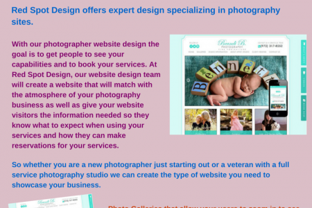 Web Design for Photographers Infographic