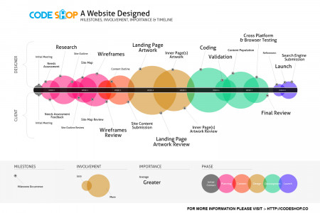 web design process and design Infographic