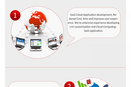 Web Development - SASA Software Technologies Infographic