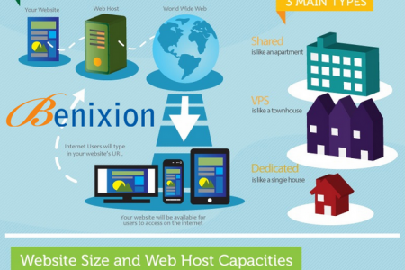 Web Hosting Company in Delhi Infographic