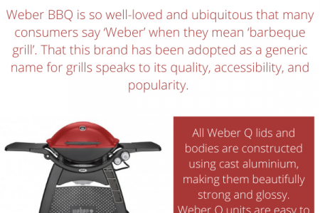 Weber Q Barbecues Buying Guide  Infographic