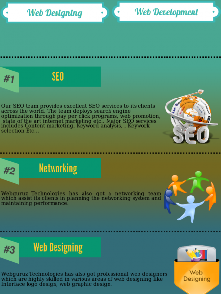 Webguruz - Providing  Excellence in IT Solution Infographic
