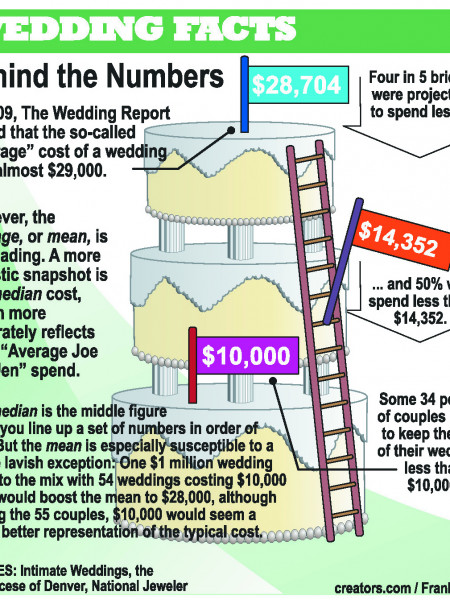 Wedding Cost Statistics Infographic