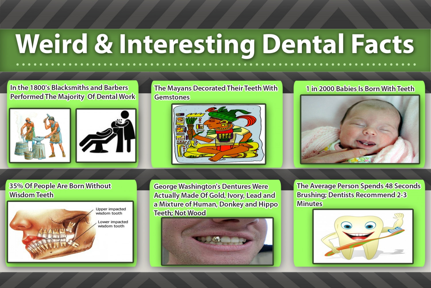 Weird & Interesting Dental Facts Infographic