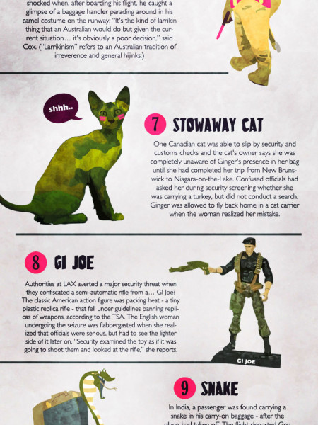 Weird Things Found In Airport Security Infographic
