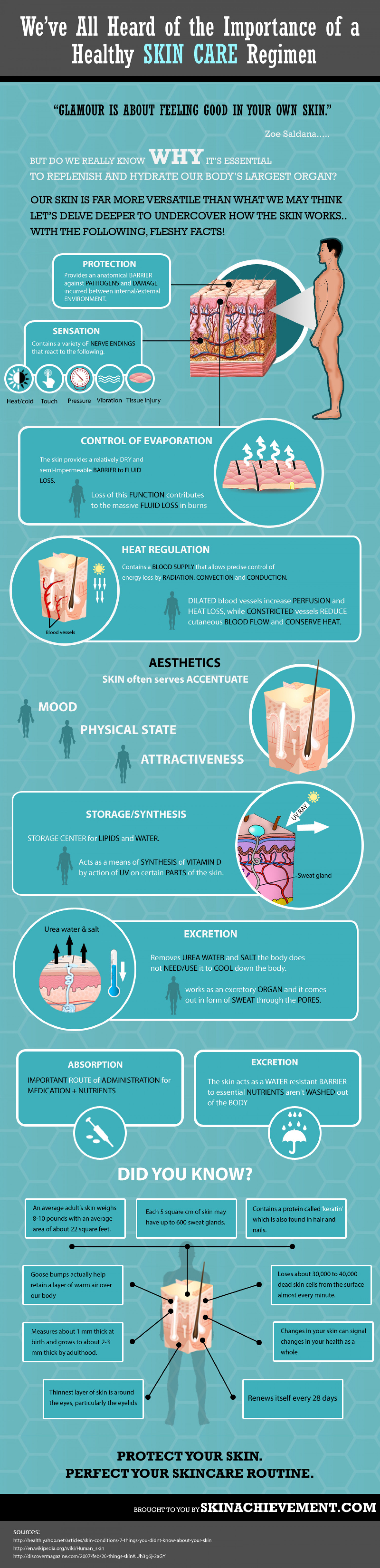 We've All Heard of the Importance of a Healthy SKIN CARE Regimen Infographic