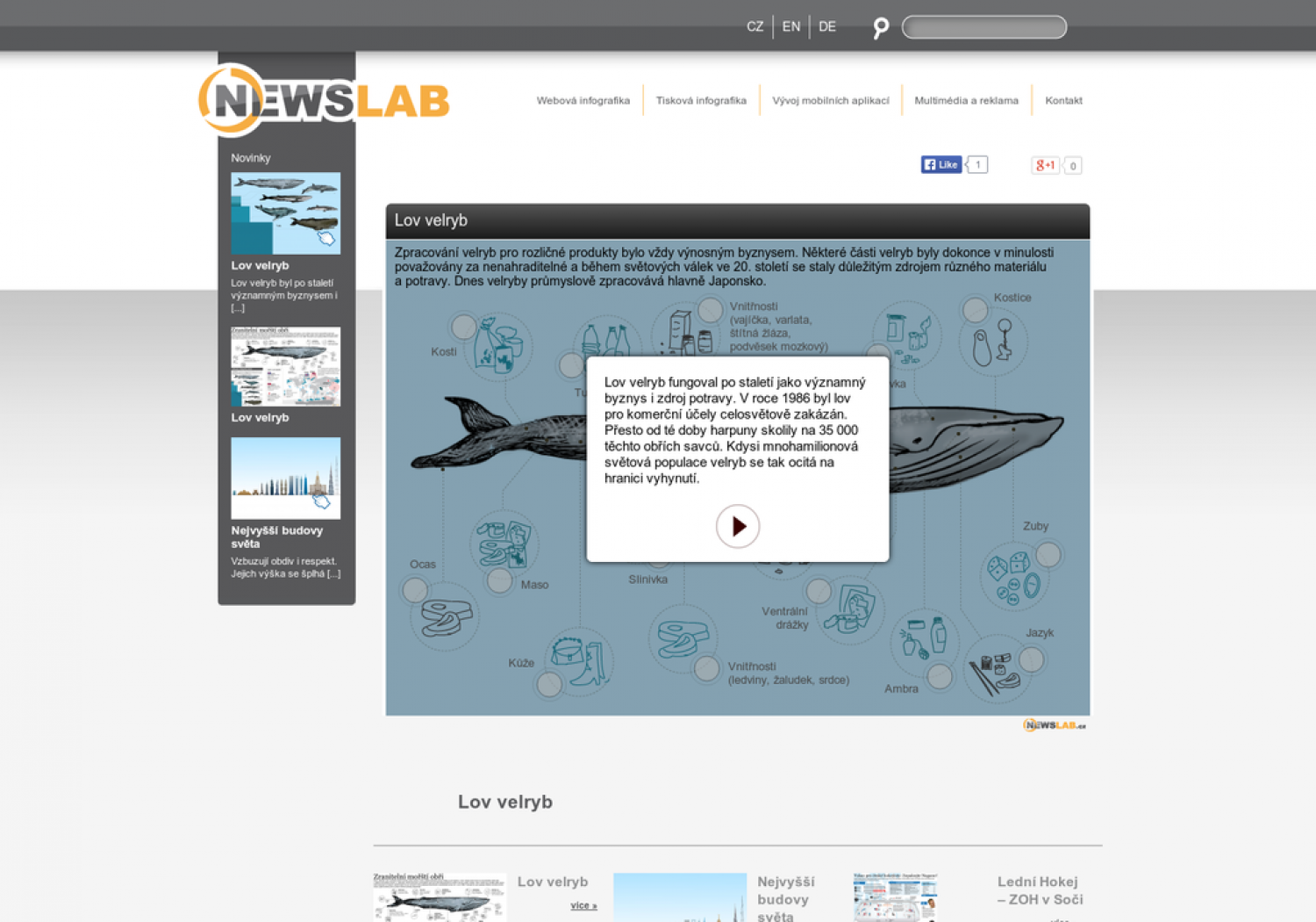 Whaling Infographic