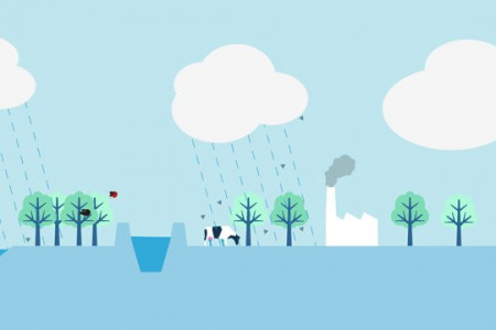 What are the consequences of climate change Infographic